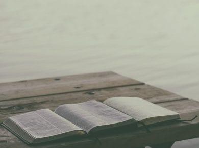 Bible's
