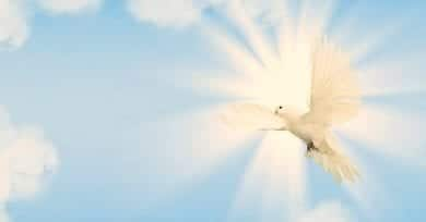 dove, nature of the Holy Spirit, paraclete