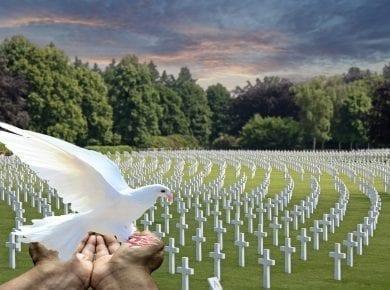 Dove Graveyard