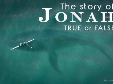 Jonah Bible